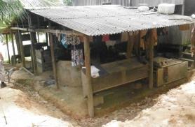 Kohalikel külas - Amatsoonas
