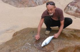 Meile valmistatakse just äsja püüdud kala