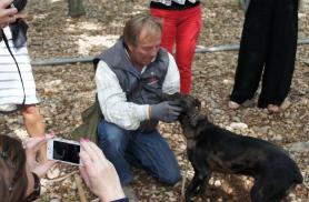 Trühvlifarmis. Oluline on ka koera käest trühvel kätte saada:)