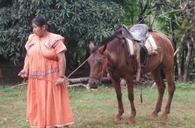 Guaymede juurde saab hobustega