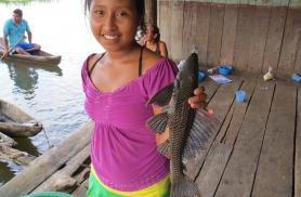 Carachama, mis tõlkes tähendab koledat nägu, iseloomustab hästi seda eelajaloolist kõva soomusega kala, mis on Amazonases üks põhilisi supikalu.