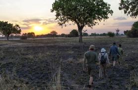 jalgsisafari Sambias