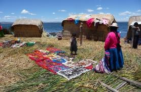 Pilliroo saarel Peruus 2010