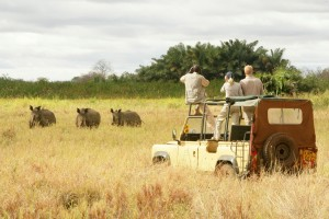 Game_Drives_Meru_National_Park