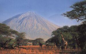 safari Tansaanias