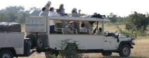 Safari_vehicle_-_watching_Buffb