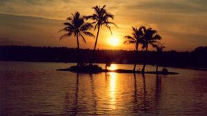 A_scene_from_the_backwaters_of_Kottapuram_134