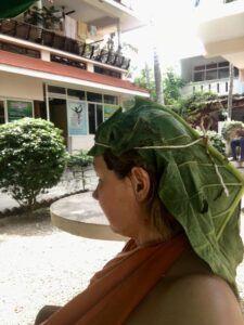 Banaanilehed peas balanseerivad vatat